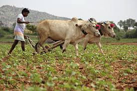 farmers in union budget 2016