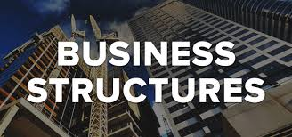 organizational Structure of business
